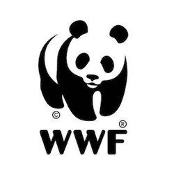 Consultoria WWF Rehabilitación Energética