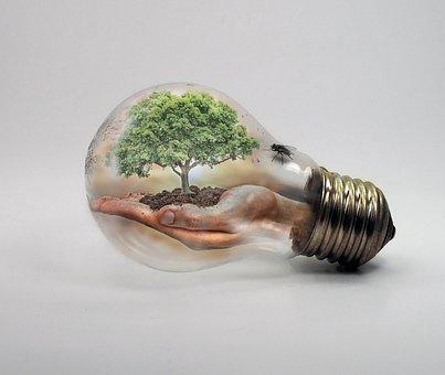 Reducir Emisiones. 5 cosas que puedo hacer.