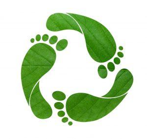 Conoce los beneficios de calcular la Huella de Carbono en tu empresa