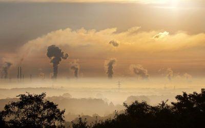 Huella de Carbono. 7 empresas que ya la han calculado.